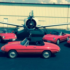 RARE OPPORTUNITY to BUY 5 ALFA SPIDERS - 1966 Series 1, 1974 S2, 1988 S3, 1993 S4, & 1994 CE