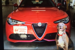 Entry # 41 - 2019 Giulia 2.0 TI Q4 (Factory Order) - Terrence Quilico