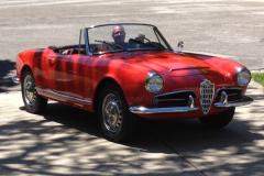 Entry # 205 - 1966 Giulia Spider Veloce - Michael Fisch